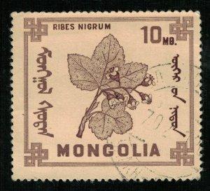 Flower, Mongolia (T-8274)