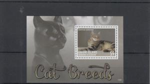 Union Island Grenadines St Vincent 2013 MNH Cat Breeds I 1v S/S Pets Shorthair