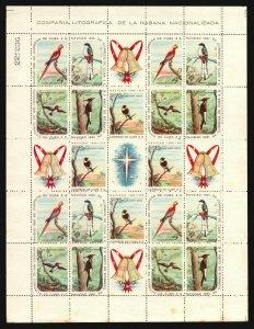Bird parrot woodpecker hummingbird sheetlet christmas Fauna scarce & valuable