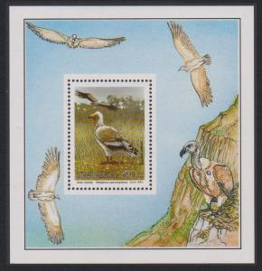 Transkei Egyptian Vulture Endangered Birds MS SG#MS272a MI#Block 8 SC#258a