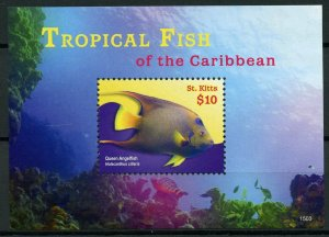 St Kitts Fishes Stamps 2015 MNH Tropical Fish of Caribbean Angelfish 1v S/S I