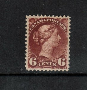 Canada #43 Extra Fine Mint Very Lightly Hinged Gem **With Certificate**