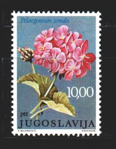 Yugoslavia. 1977. 1681 from the series. Pelargonium, flowers. MNH.