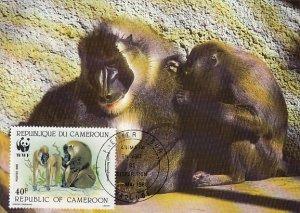 Cameroun 1988 Maxicard Sc #844 40fr Drill baboon WWF