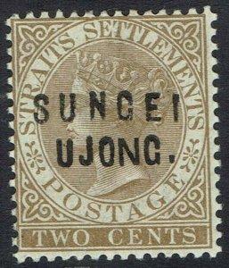 SUNGEI UJONG 1883 QV STRAITS 2C TYPE 12 + 19