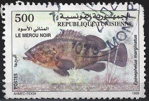 Tunisia 1197 500m Fish used hinged