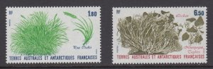 French Southern & Antarctic Territories    #126-27    mnh       cat $2.55