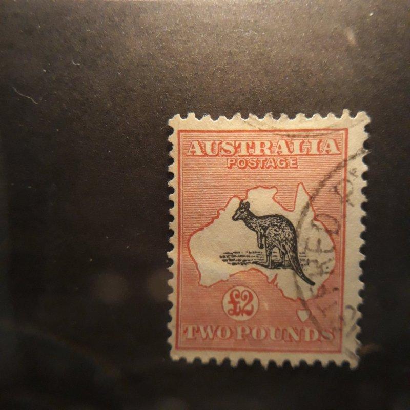 australis 2 pound rose/blk