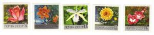 Russia #3596-3600 MNH flowers