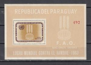 Paraguay, Scott cat. 766 A. F.A.O., Freedom From Hunger s/sheet.