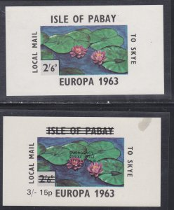 Isle of Pabay Water lilies, 2 Souvenir Sheets, One has a thin.