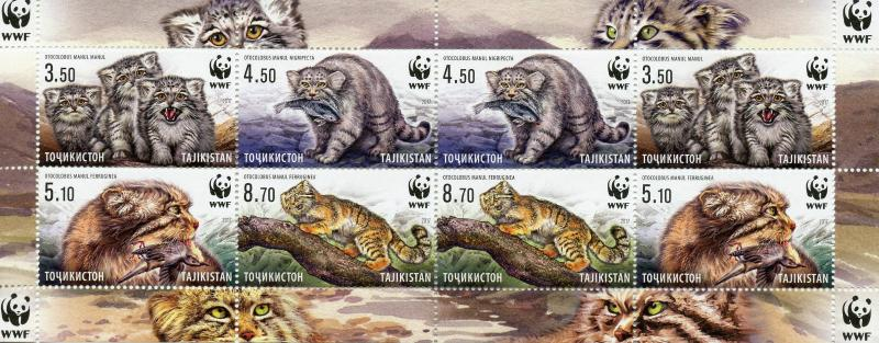 Tajikistan 2017 MNH WWF Manul Pallas's Cat 8v M/S Wild Cats Animals Stamps