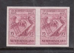 Newfoundland #222a XF/NH Imperf Pair