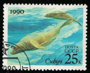 Sea animal, 25 kop (T-6859)