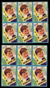 1938 VFW National Home Disabled Soldiers US Poster Stamp (LOT OF 8)