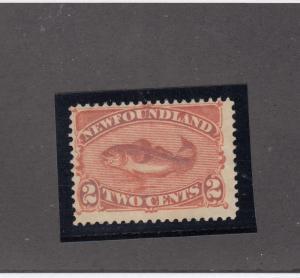 NEWFOUNDLAND # 48 FVF-MNH FULL PART OG 2cts CODFISH CAT VALUE $90
