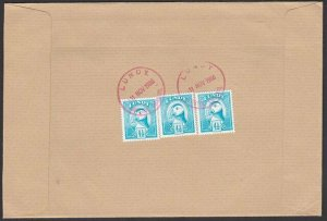 GB LUNDY 1980 cover - Puffin stamps.........................................F910