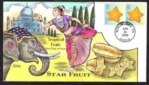 $US FDC SC#4254 & 4256 Burlingame, CA 4/25/2008 Tropical Fruit Collins