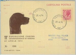 82664 - ITALY - POSTAL HISTORY -  Repiquage  STATIONERY CARD:  DOGS 1974