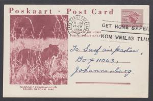 South Africa H&G 42-12 postcard 1964 GET HOME SAFELY slogan cancel, Lion, Kruger