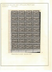 Newfoundland #193ii Very Fine Never Hinged Double Perforated Block Of 28
