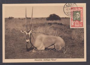 Ethiopia Sc 122 on 1931 post card with HARRA favor cancel, depicts an Oryx, VF
