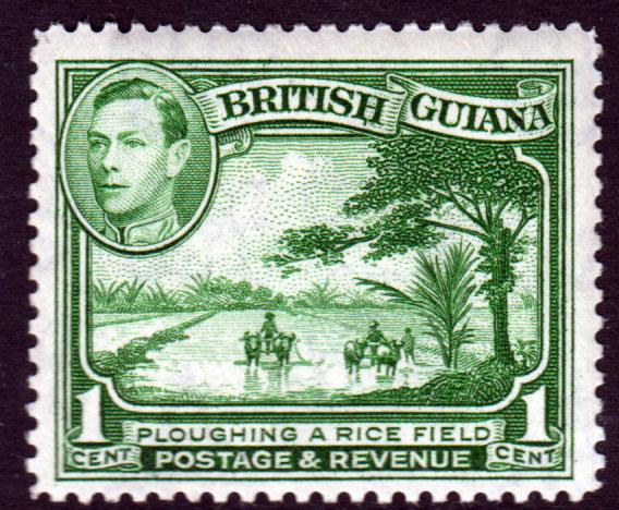 British Guiana KGVI 1938 1c Green SG308a Mint Hinged