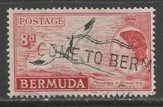 BERMUDA 153 VFU BIRD L3362-4