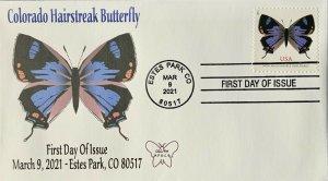 AFDCS 2021 Colorado Hairstreak Butterfly Estes Park, CO