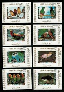 Birds, (3337-T)