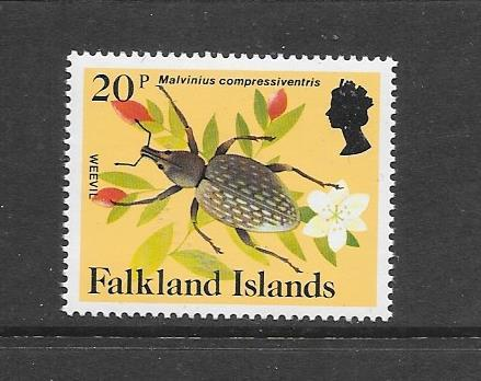 INSECTS - FALKLAND ISLANDS-#397 WEEVIL   MNH