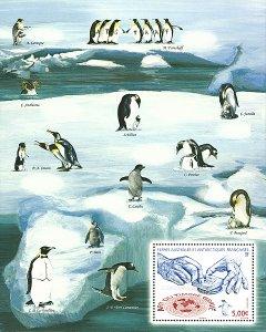 Scott #489 Penguin S/S MNH