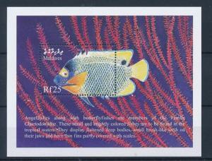 [36654] Maldives 1999 Marine life Angel Fish MNH Sheet