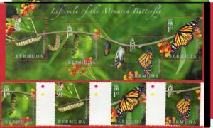 Bermuda 2016 butterflies insects set+s/s MNH