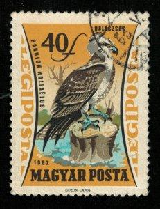 Bird (TS-2091)