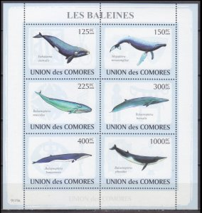 Comoro Islands MNH S/S Whales 2009 6 Stamps