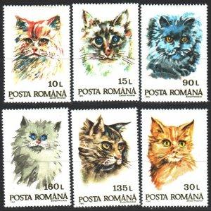 Romania. 1993. 4895-4500. Domestic cats. MNH.