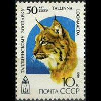 RUSSIA 1989 - Scott# 5794 Lynx-Tallinn Zoo Set of 1 NH