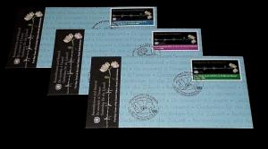 U.N. 2008, HOLOCAUST REMEMBRANCE, SINGLES ON FDCs, ALL 3 OFFICES, NICE LQQK