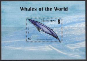 MONTSERRAT SGMS1387 2008 WHALES OF THE WOLRD MNH