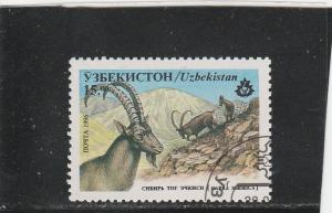 Uzbekistan  Scott#  107  CTO  (1996 Siberian Ibex)