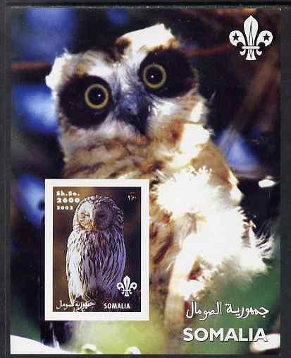 Somalia 2002 Owls #2 imperf s/sheet with Scouts Logo, unm...