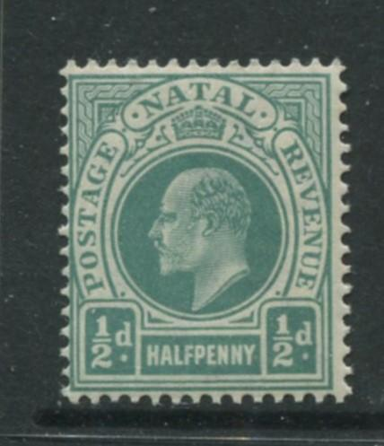 Natal -Scott 81 - KEVII Definitive -1902 -MNH - Single 1/2p  Stamp