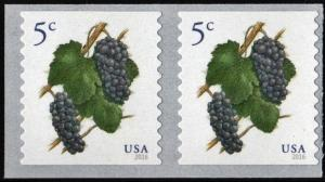 SC#5038 5¢ Grapes Coil Pair (2016) SA