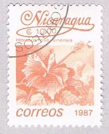 Nicaragua Hibiscus 10 (AP107915)