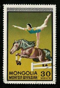 1973, Mongolia, 30T (RT-1323)