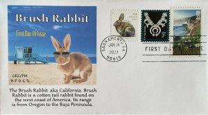 AFDCS 5544 Brush Rabbit aka California Brush Oregon to Baja Sunglasses