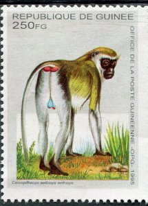 Guinea 1995 AFRICAN MONKEY GUENON 1 value Perforated Mint (NH)