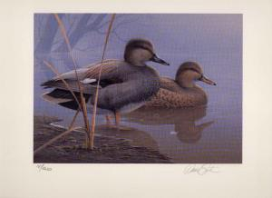 TEXAS #16 1996 STATE DUCK STAMP PRINT GADWALL  by Daniel Smith 2 stamps