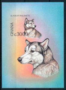 [75735] Ghana 1997 Dogs Alaskan Malamute Imperf. Sheet MNH